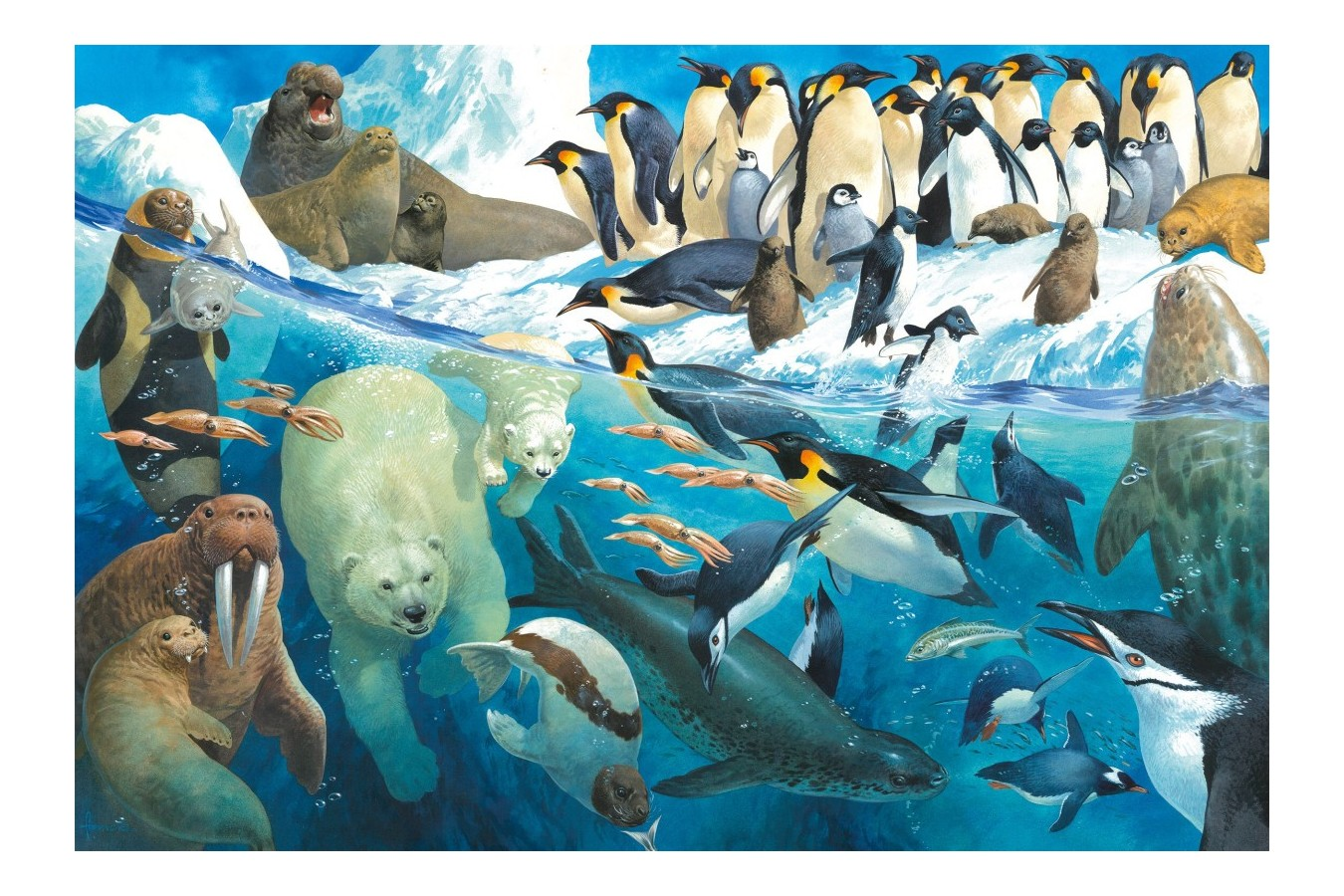 Puzzle Schmidt - Animals Of The Polar Regions, 100 piese (56295)