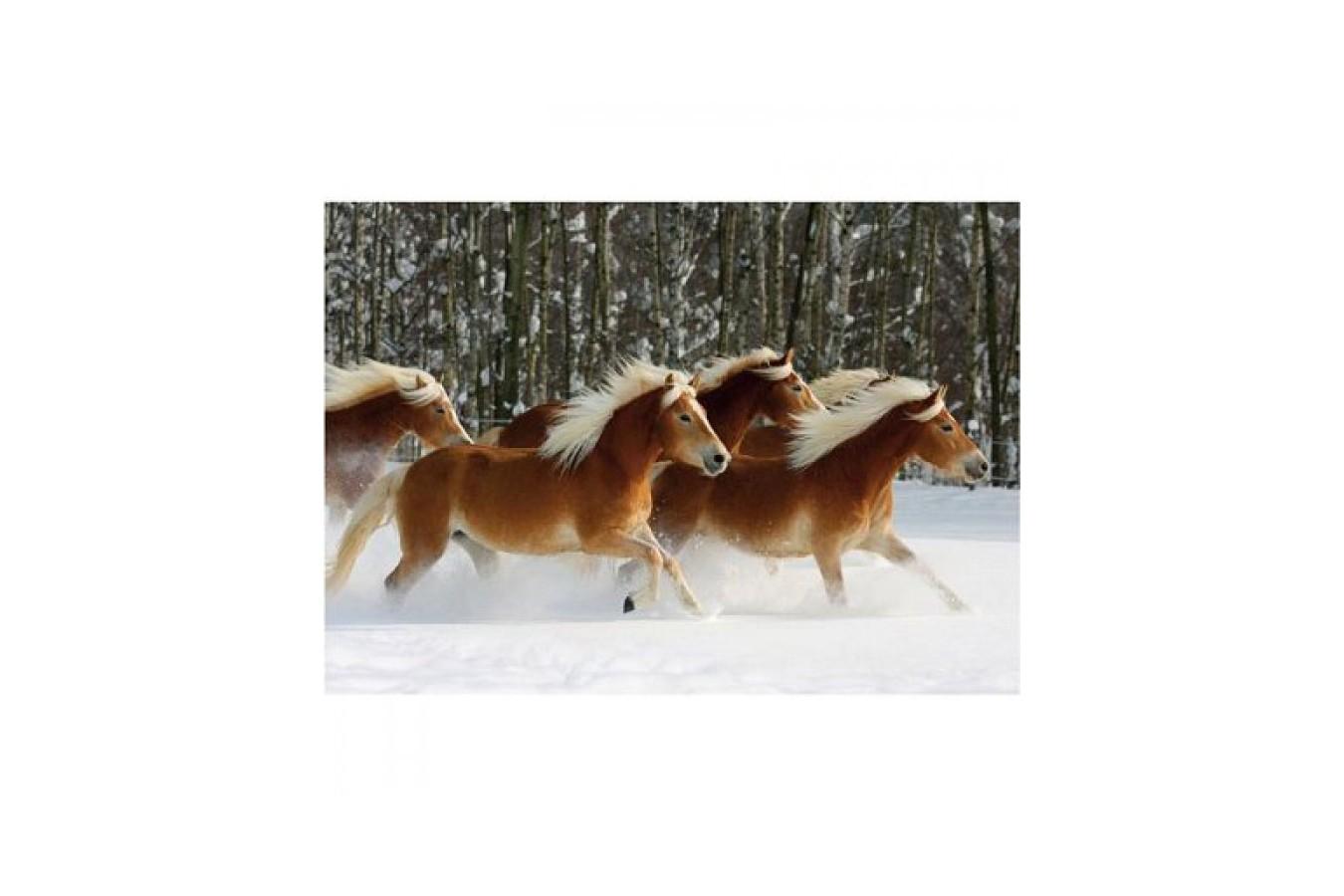 Puzzle D-Toys - Horses Magic: Haflinger IV, 239 piese dificile (DToys-65933-HH04-(70470)) imagine