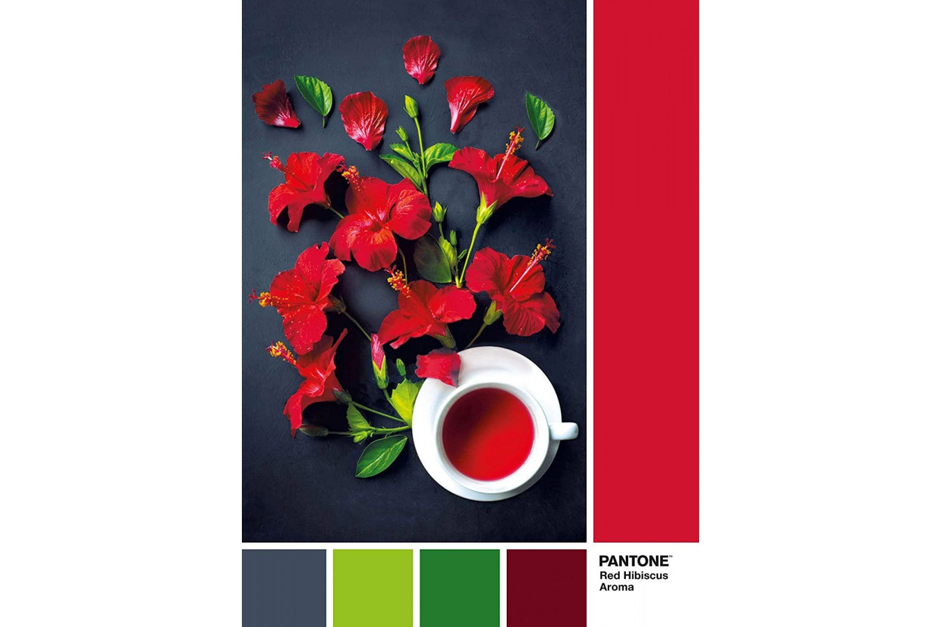 Puzzle Clementoni - Pantone - Goji Berry, 1.000 piese (39494) imagine