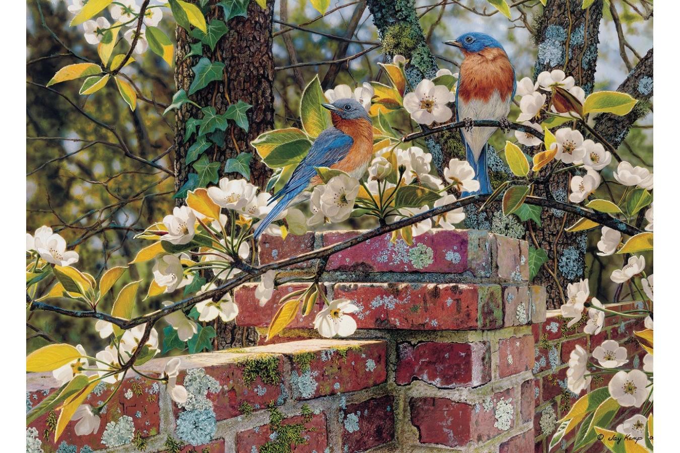 Puzzle Cobble Hill - Backyard Blues, 1.000 piese (Cobble-Hill-80137) imagine