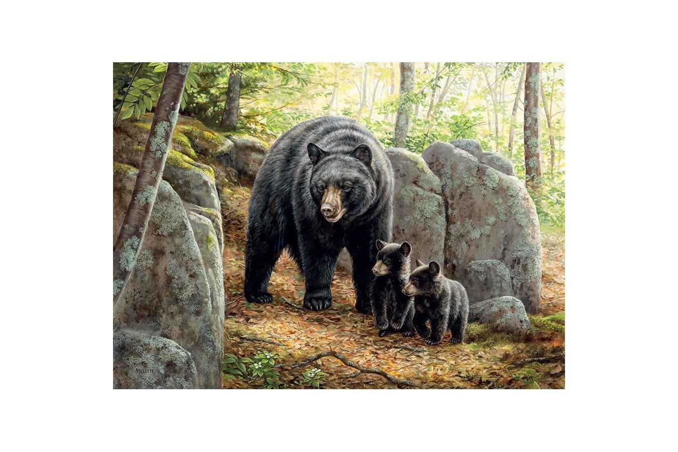 Puzzle Cobble Hill - Mama Bear, 1.000 piese (Cobble-Hill-80154) imagine