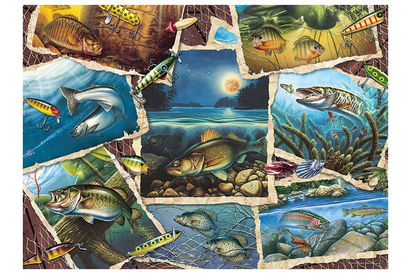 Puzzle Cobble Hill - Fish Pics, 1.000 piese (Cobble-Hill-80209) imagine