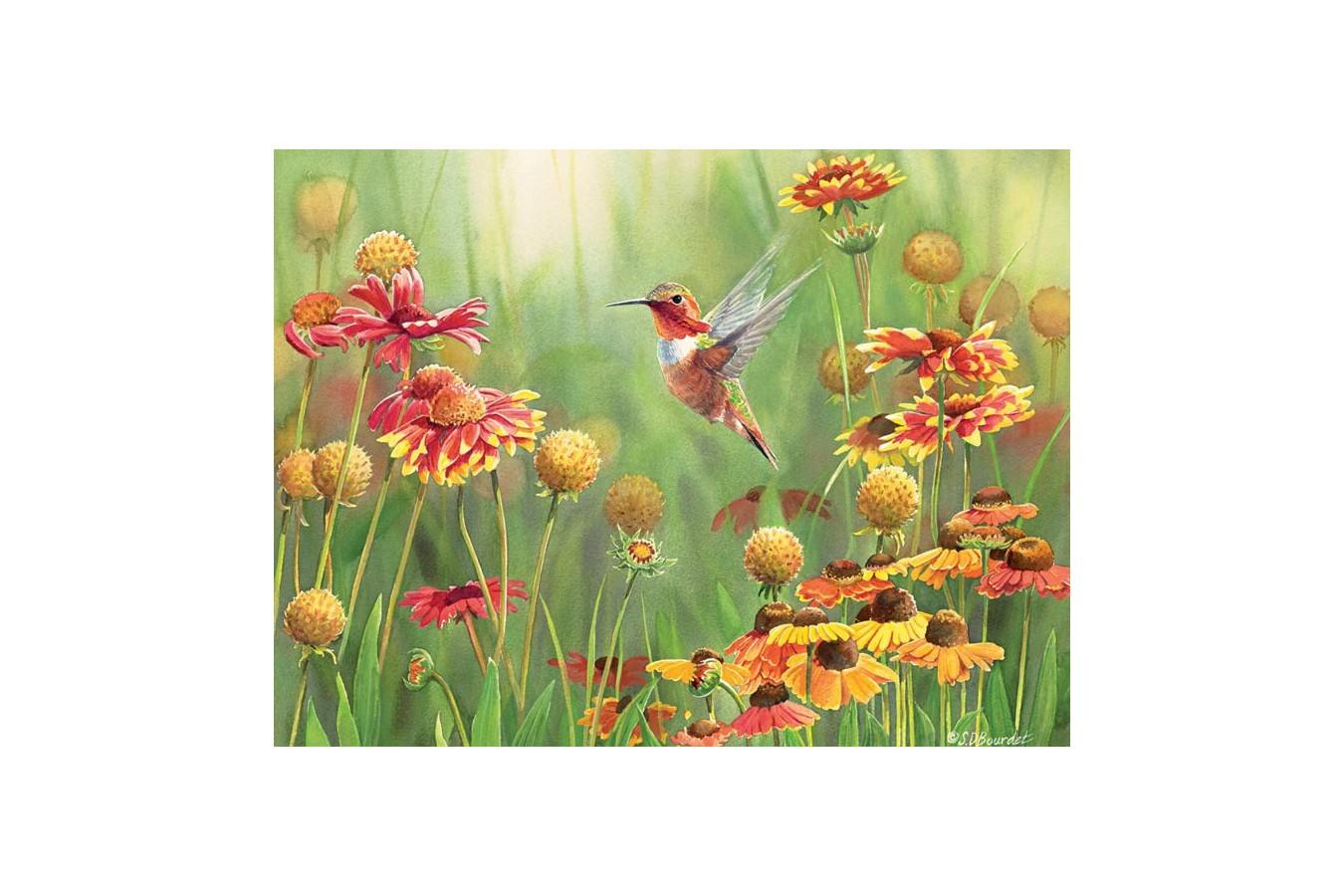 Puzzle Cobble Hill - Rufous Hummingbird, 500 piese XXL (Cobble-Hill-85027) imagine
