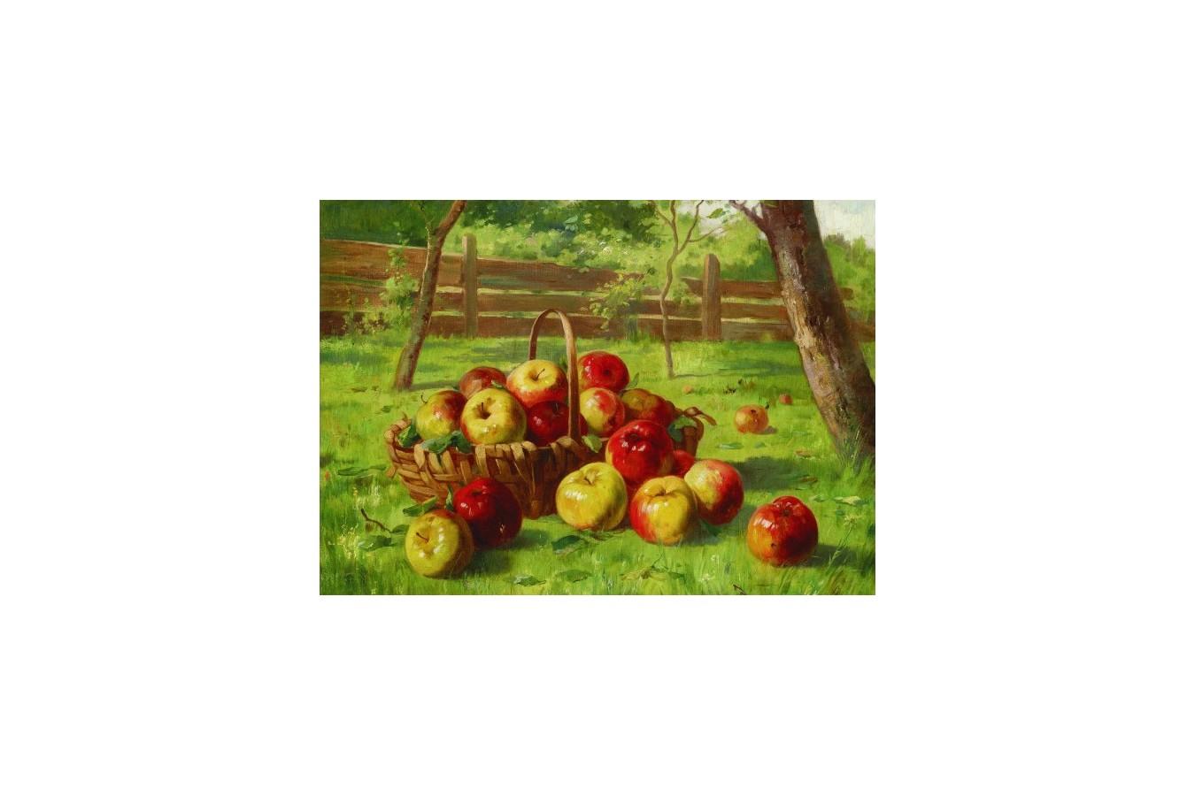 Puzzle Gold Puzzle - Karl Vikas: Apple Harvest, 500 piese (Gold-Puzzle-60768) imagine