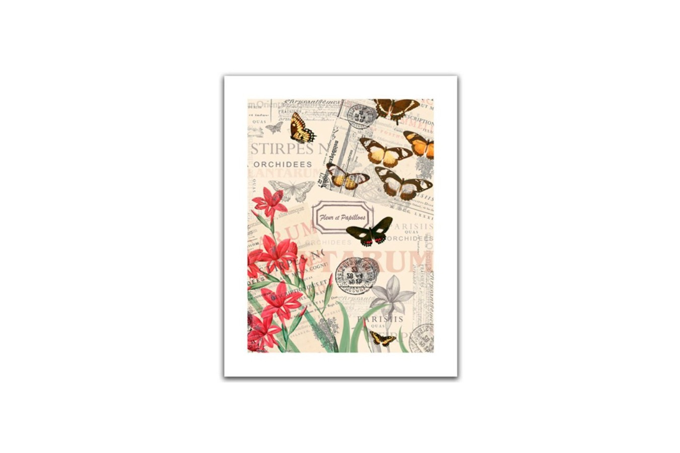 Puzzle din plastic Pintoo - Buttlerfly & Flower, 300 piese (H1585) imagine