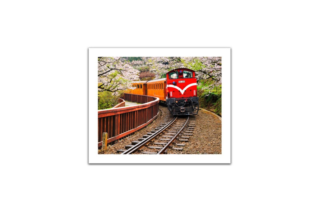 Puzzle din plastic Pintoo - Forest Train in Alishan National Park, Taiwan, 500 piese (H1482) imagine