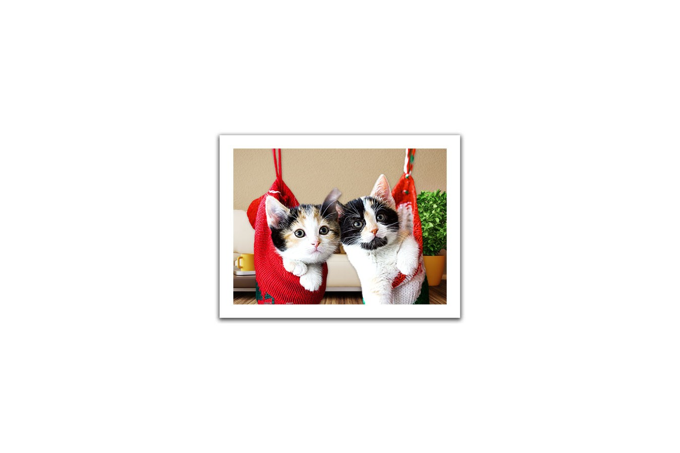 Puzzle din plastic Pintoo - Christmas kittens, 300 piese (H1387) imagine