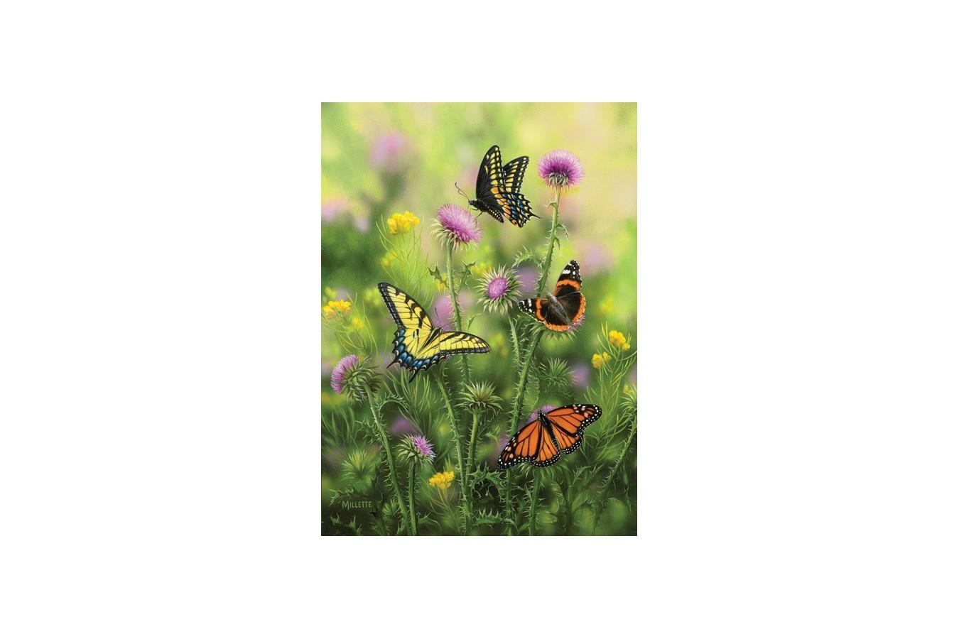 Puzzle SunsOut - Butterflies & Thistle, 500 piese (Sunsout-30921) imagine