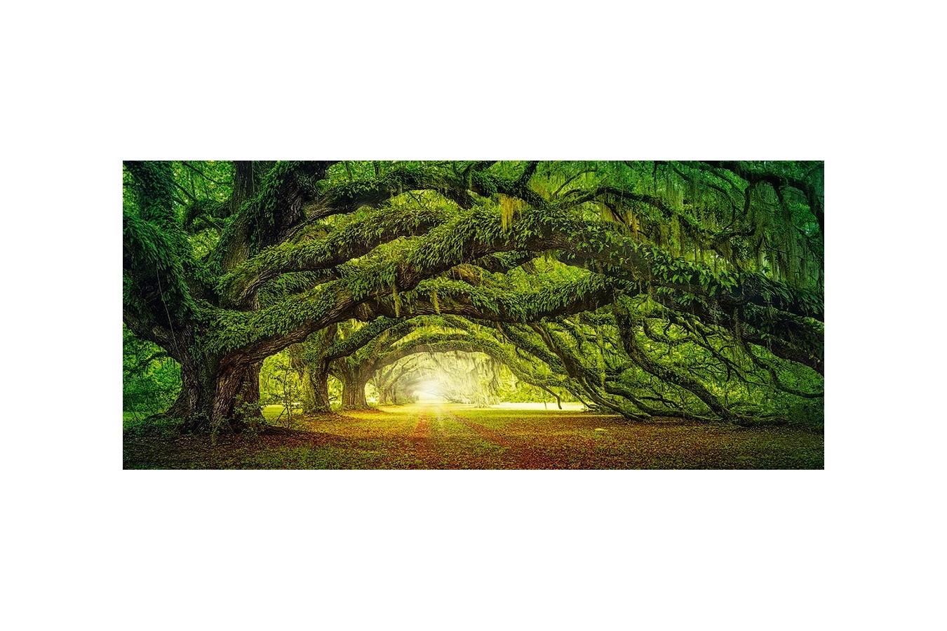 Puzzle Castorland Panoramic - Passage, 600 Piese imagine