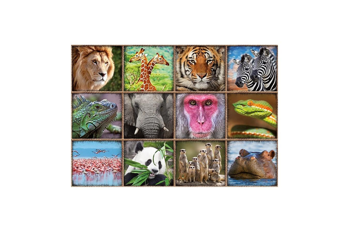 Puzzle Educa - Wild animals collage, 1000 piese, include lipici puzzle (17656) imagine