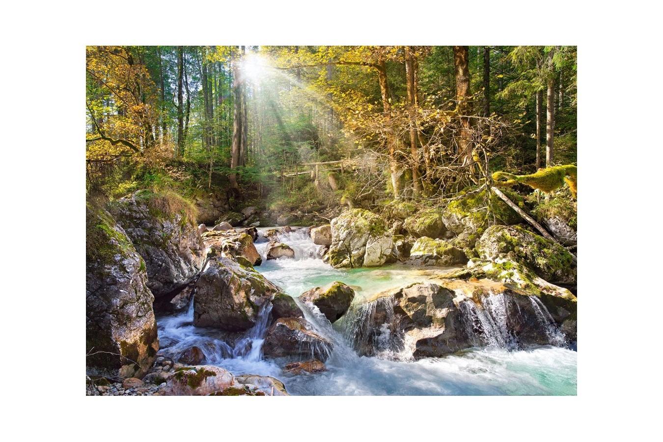 Puzzle Castorland - Sunny Forest Sream, 2000 piese imagine