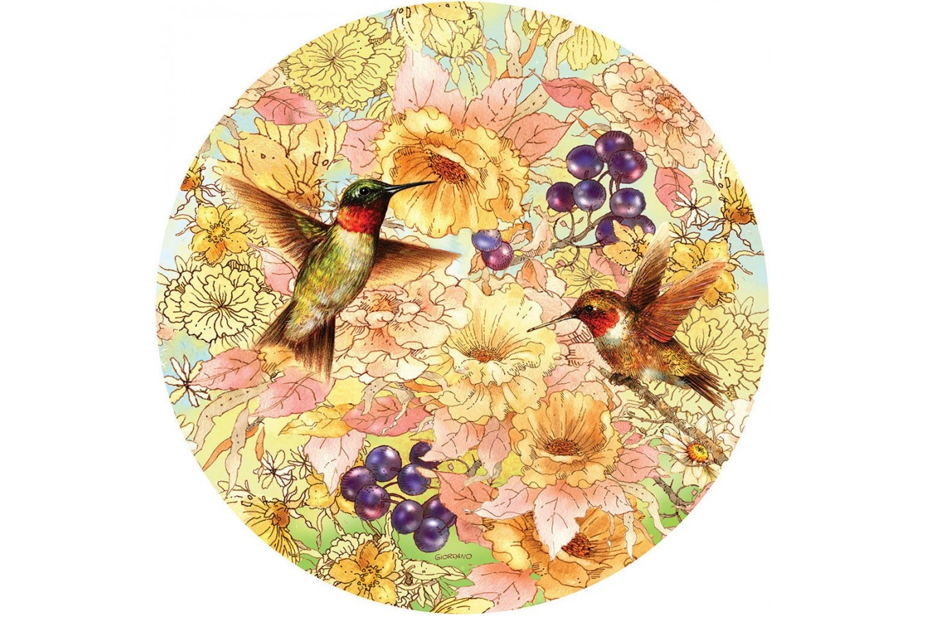 Puzzle rotund Sunsout - Giordano Studios: Hummingbirds and Berries, 1.000 piese (37172) imagine