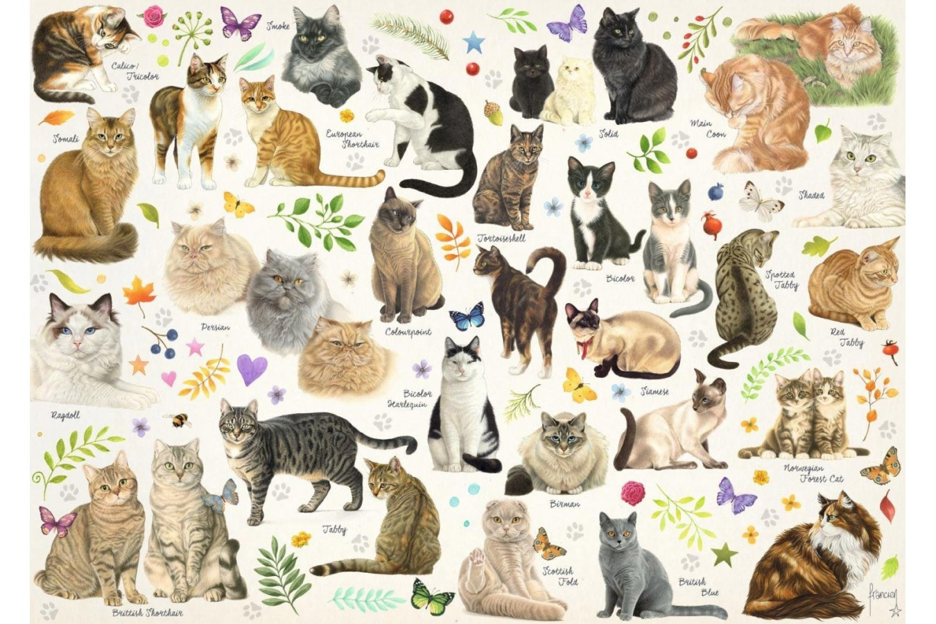 Puzzle Jumbo - Cats Poster, 1.000 piese (18595) imagine