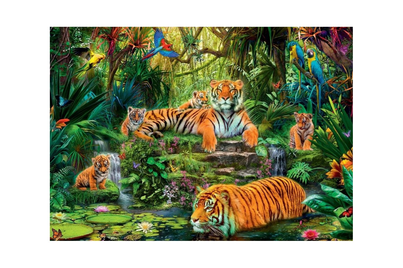 Puzzle Jumbo - Family of tigers at the Oasi, 1.000 piese (17245) imagine