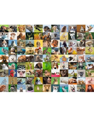 Puzzle Ravensburger - 99 Funny Animals, 1.000 piese (19642)