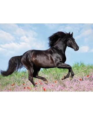 Puzzle Ravensburger - Black Horse, 200 piese XXL (12803)