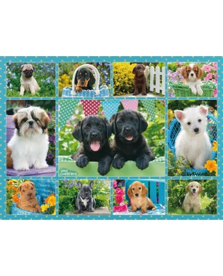 Puzzle Ravensburger - Collage - Dogs, 500 piese (14708)