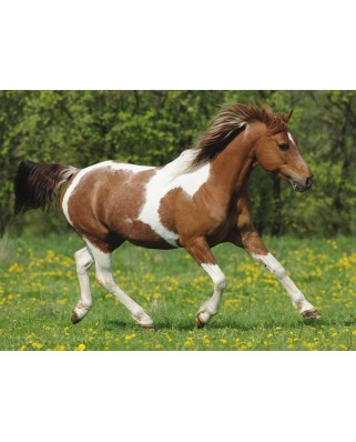 Puzzle Ravensburger - Galloping, 100 piese XXL (10848)