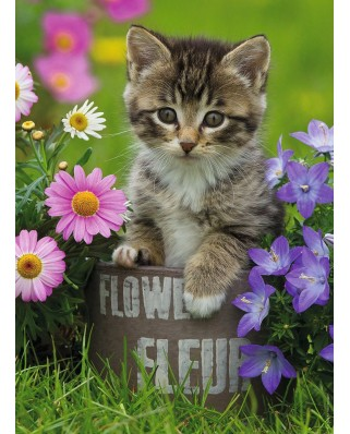 Puzzle Ravensburger - Kitten amongst the Flowers, 100 piese XXL (10847)