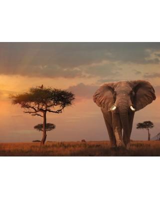Puzzle Ravensburger - Nature Edition No 13 - Elefant in Masai Mara Nationalpark, 1.000 piese (15159)