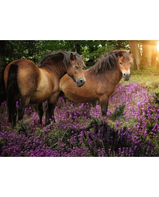 Puzzle Ravensburger - Ponies in the Flowers, 500 piese (14813)