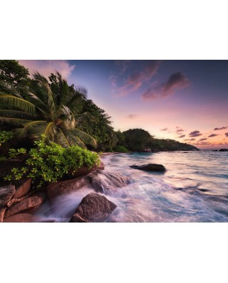 Puzzle Ravensburger - Praslin, Island in the Seychelles, 1.000 piese (15156)