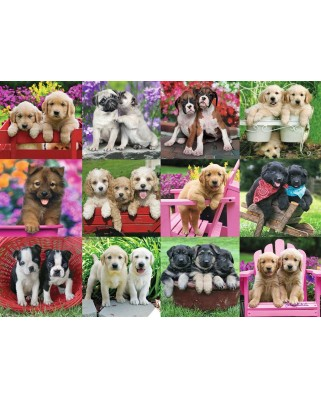 Puzzle Ravensburger - Puppy Pals, 500 piese (14659)