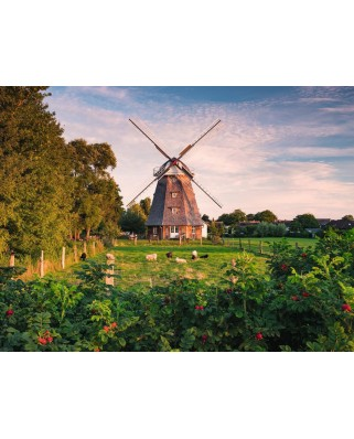 Puzzle Ravensburger - Windmill on the Baltic Sea, 1500 piese (16223)