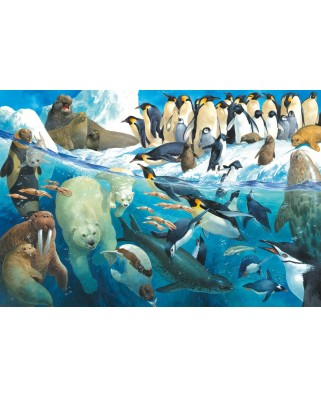 Puzzle Schmidt - Animals Of The Polar Regions, 100 piese (56295)