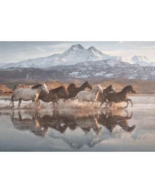 Puzzle Schmidt - Horses In Cappadocia, 1.000 piese (58376)