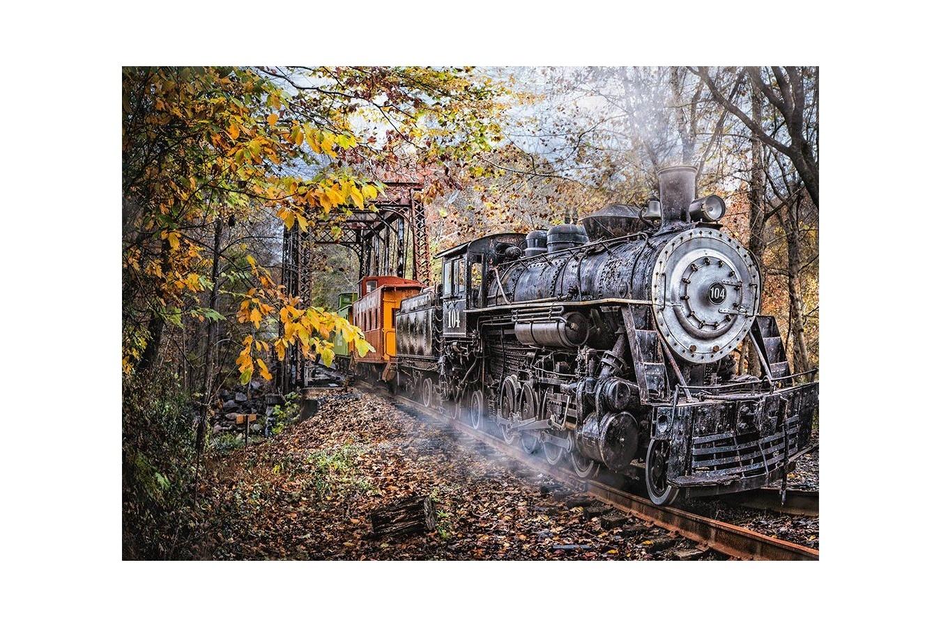 Puzzle Schmidt - Railway Fascination, 1.000 piese (58377)