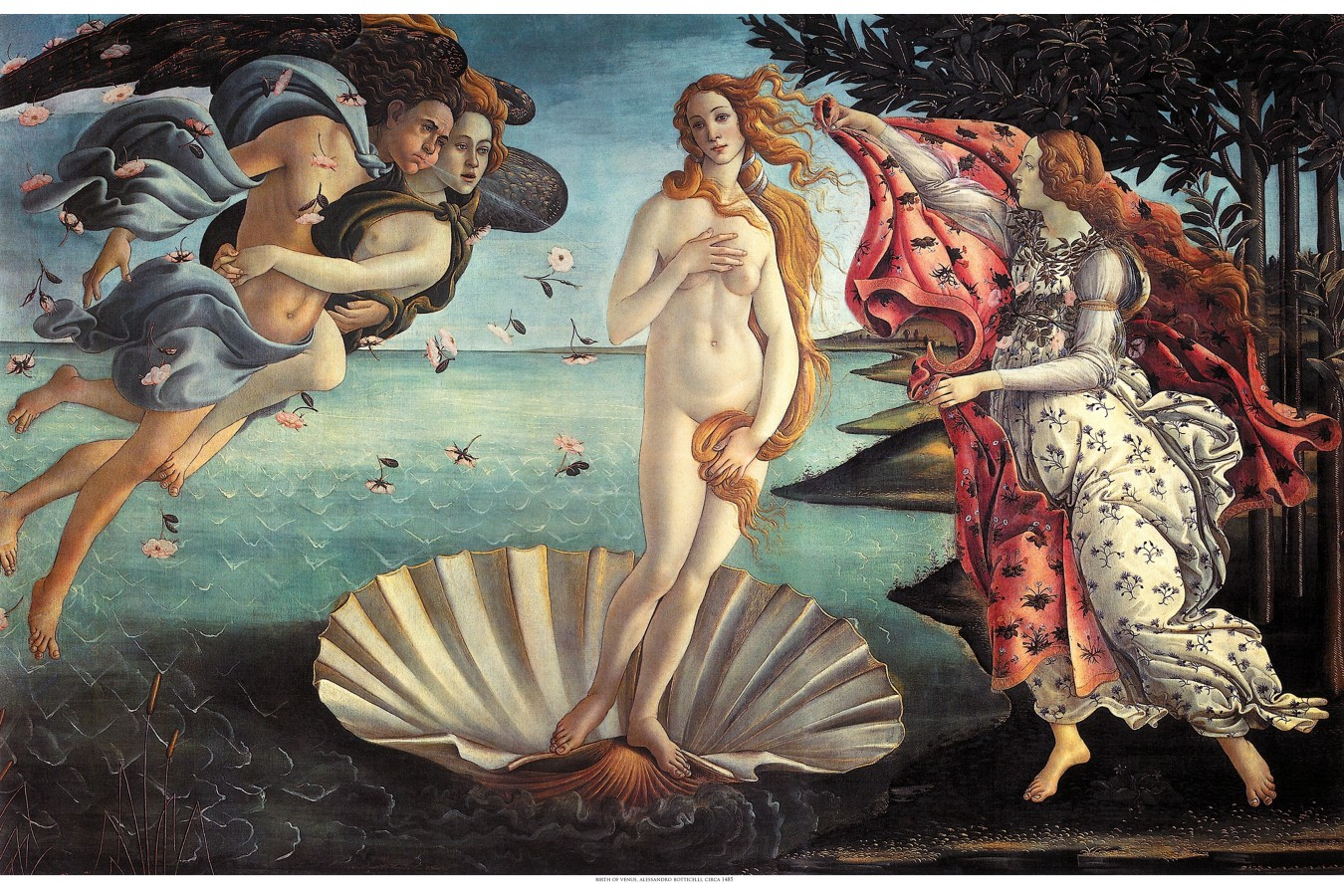 Puzzle D-Toys - William Bouguereau: The Birth of Venus, 1.000 piese (72764-1)