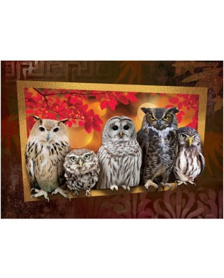 Puzzle Art Puzzle - Owls, 1.000 piese (Art-Puzzle-4375)