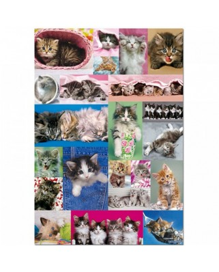 Puzzle Educa - Kittens, 1.000 piese (14442)