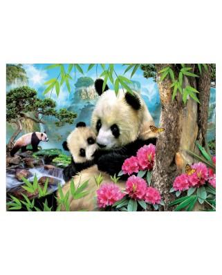 Puzzle Educa - Panda, 1.000 piese, include lipici (17995)