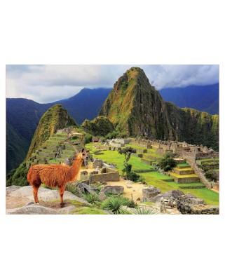 Puzzle Educa - Machu Picchu, Peru, 1.000 piese, include lipici (17999)