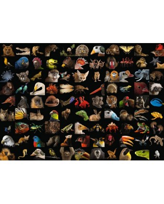 Puzzle Ravensburger - 99 Stunning Animals, 1.000 piese (15983)