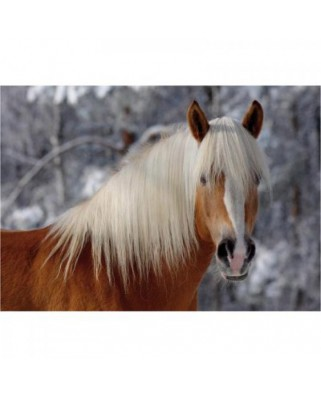 Puzzle D-Toys - Horses Magic: Haflinger I, 239 piese dificile (Dtoys-65933-HH01-(65933))