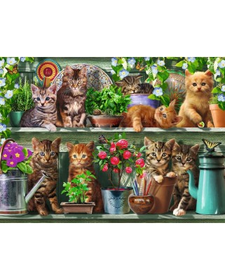 Puzzle Ravensburger - Cats on the Shelf, 500 piese (14824)