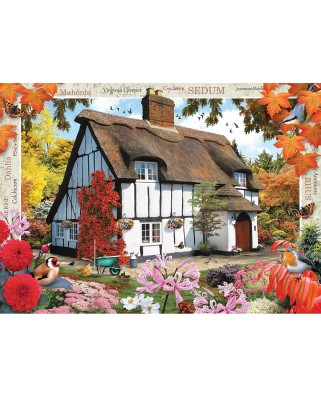 Puzzle Master Pieces - Autumn Cottage, 1.000 piese (Master-Pieces-71813)