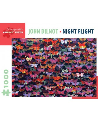Puzzle Pomegranate - John Dilnot: Night Flight, 1.000 piese (AA1023)