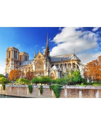 Puzzle Bluebird Puzzle - Cathedrale Notre-Dame de Paris, 1.000 piese (Bluebird-Puzzle-70224)
