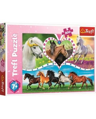 Puzzle Trefl - Horses, 200 piese (13248)