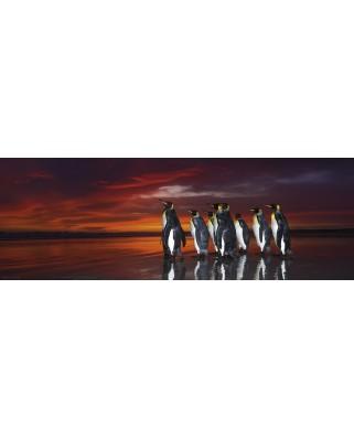 Puzzle panoramic Heye - Wim van den Heever: King Penguins, 1.000 piese (29858)