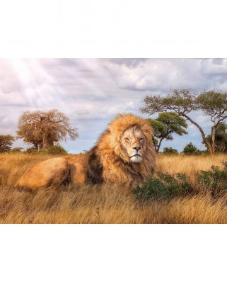 Puzzle Clementoni - The King, 1.000 piese (39479)