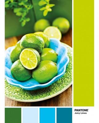 Puzzle Clementoni - Pantone - Juicy Limes, 1.000 piese (39492)
