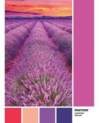 Puzzle Clementoni - Pantone - Purple, 1.000 piese (39493)