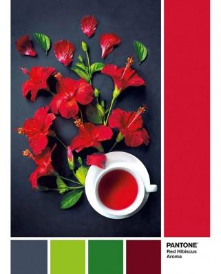 Puzzle Clementoni - Pantone - Goji Berry, 1.000 piese (39494)