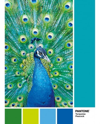 Puzzle Clementoni - Pantone - Peacock Blue, 1.000 piese (39495)