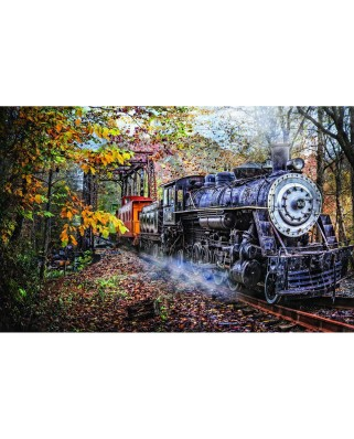 Puzzle SunsOut - Celebrate Life Gallery - Train's Coming, 1.000 piese (Sunsout-30121)